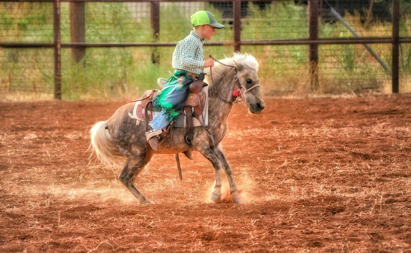 Horselovers Horselove Horse Riding Bronte Texas Photoart Fine Art Photography Eye4photography  Nikonphotography Horse This Week On Eyeem Horses Rodeo Scene Rodeo Rodeo! Cowboy Up Cowboys Cowboy Rodeo Time Ponies Pony