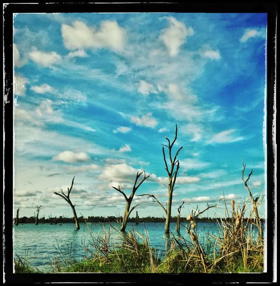 The Essence Of Summer Amazingly Beautiful Lake Mulwala Australia