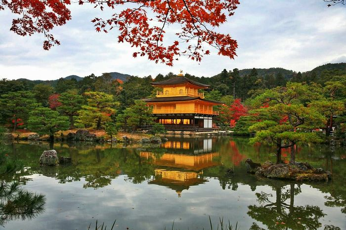 Re Edited Kinkakuji Golden Pavilion  Kyoto, Japan Water Reflections Architecture Tree_collection