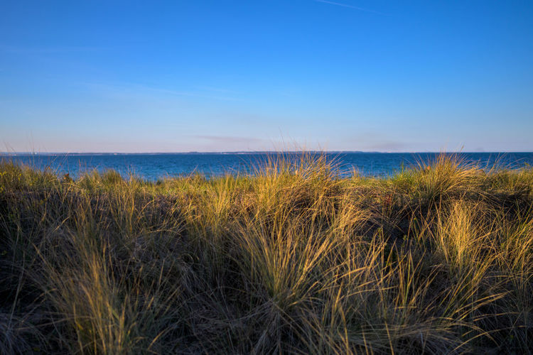 Go-west-photography.com Nature Outdoors Copy Space Water Sea Grass Sky Land Beach Plant Scenics - Nature Blue No People Beauty In Nature Horizon Horizon Over Water Landscape Marram Grass Tranquil Scene Tranquility Environment Bay Timothy Grass Baltic Sea