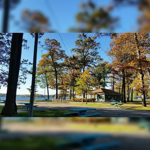 TBT  to Working in the fall at Twin Lake🍂🍃 Likeitup Likeforlike Tagsforlikes Tflers Artbasel Photography Samsung Gs5 Followforfollow Trees Fall Lake Twinlake Muskegon Michigan Newfeed The Great Outdoors With Adobe The Great Outdoors - 2016 EyeEm Awards