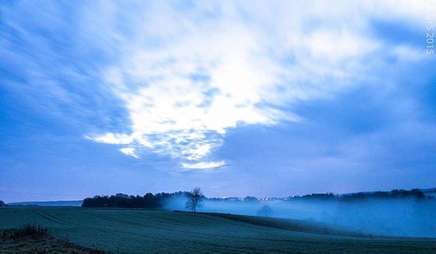 Saarland Dusk Fogg Dämmerung Nebel Landscape Landschaft