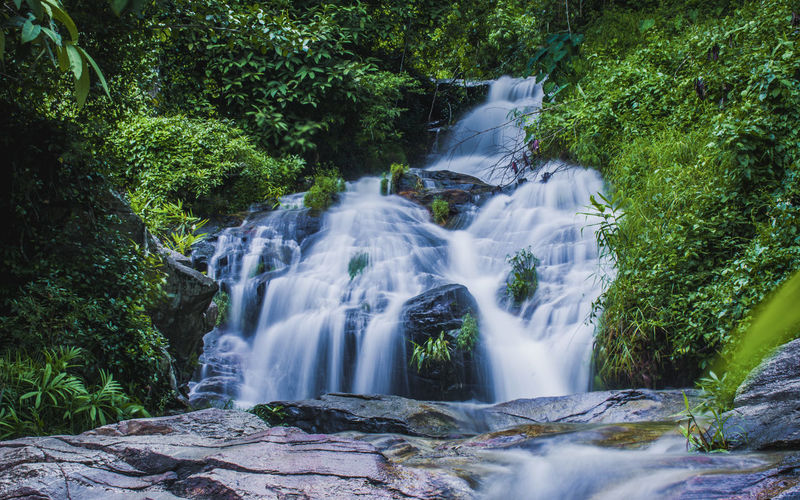 Beauty In Nature Blurred Motion Day Forest Freshness Growth Long Exposure Motion Nature No People Outdoors Plant Scenics Tranquility Travel Destinations Tree Water Waterfall