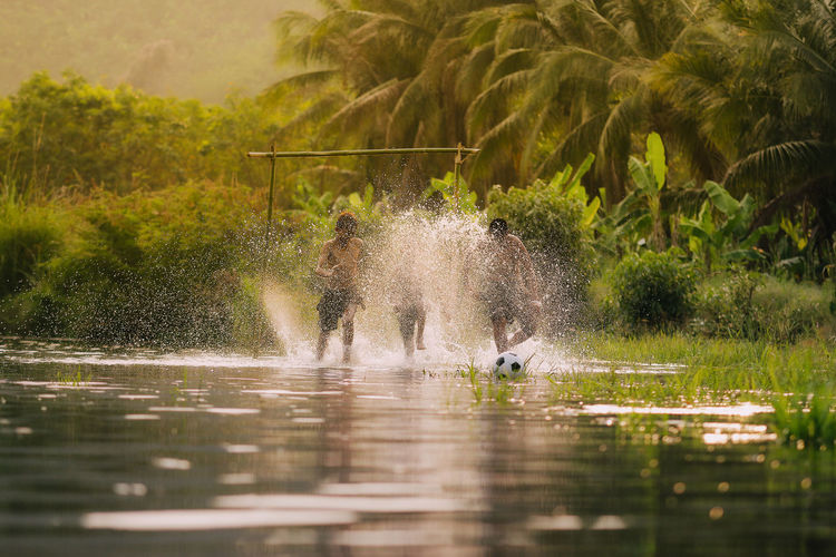 Children playing football in the river,Asia's rural lifestyle and nature. Animal Animal Themes Animal Wildlife Animals In The Wild Bird Day Growth Lake Motion Nature Outdoors Plant Splashing Spraying Swimming Tree Vertebrate Water Waterfront