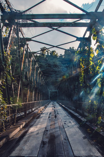 Grand'Rivière, Martinique Martinique Architecture Bridge Bridge - Man Made Structure Bridge View Built Structure Connection Footbridge Metal Nature No People Plant Sunlight Transportation Travel Destinations Tree Summer Road Tripping