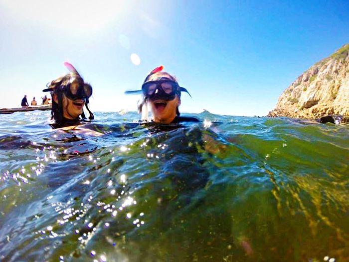 Diving Cool Funny Sister Seal
