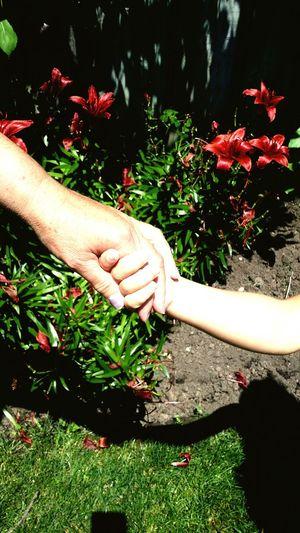 Grandma And Grandson Garden Love