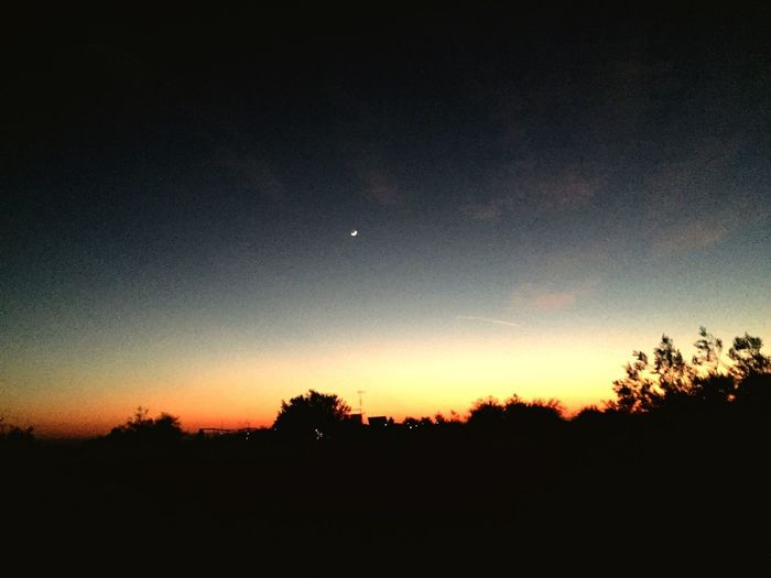 Desert sunset Moon Nature Beauty In Nature Tranquil Scene Silhouette Scenics Tranquility