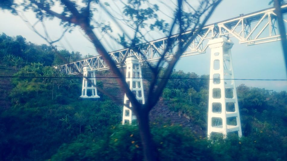 Railway scenery.. Railway Railway Track Railway Bridge Beautiful View Nature Photography Nature Nature Collection Green Nature Green Trees Plants Green Grass Outdoors Eyeemvision Eyeemvintage Hills And Valleys Green Leaves Tree Branches And Sky Look Up And Enjoy The View Beauty Of Nature