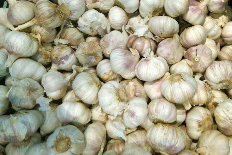 Garlic at market Backgrounds Close-up Day Food Food And Drink Freshness Full Frame Garlic Garlic Bulb Garlic Clove Healthy Eating Large Group Of Objects Market No People Outdoors