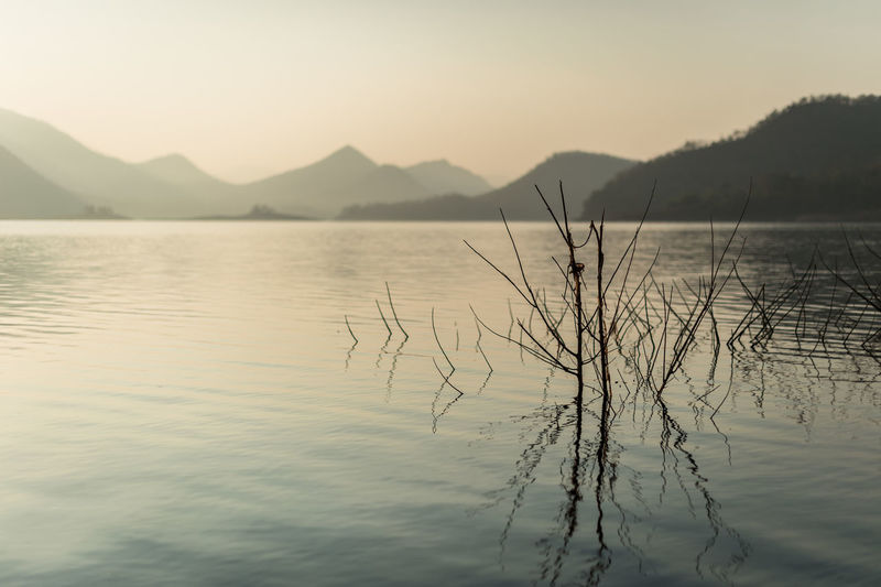 Water Tranquility Mountain Beauty In Nature Sky Tranquil Scene Scenics - Nature Lake Sunset Mountain Range No People Reflection Nature Waterfront Tree Non-urban Scene Plant Idyllic Outdoors