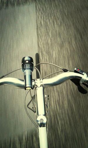 Biking Cycle BundesRadBonn Schindelhauer