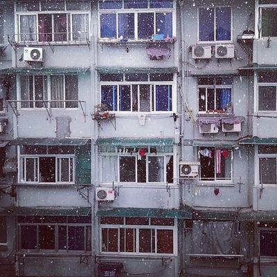 Snow Hangzhou Winter City instalife