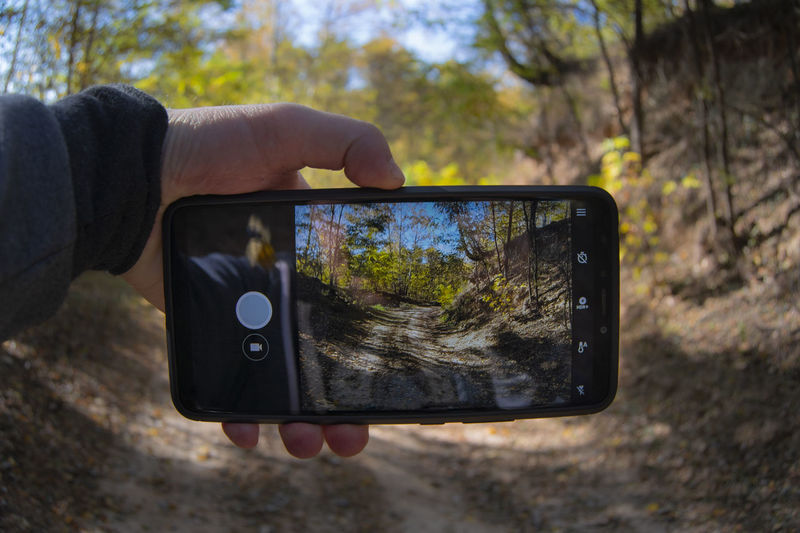 Smart Phone Technology Human Hand Photography Themes Portable Information Device Activity Wireless Technology Photographing Hand Communication Human Body Part One Person Mobile Phone Holding Screen Tree Focus On Foreground Nature Outdoors Autumn Nature Landscape Autumn Landscape Forest Path Belarus Nature Pathway