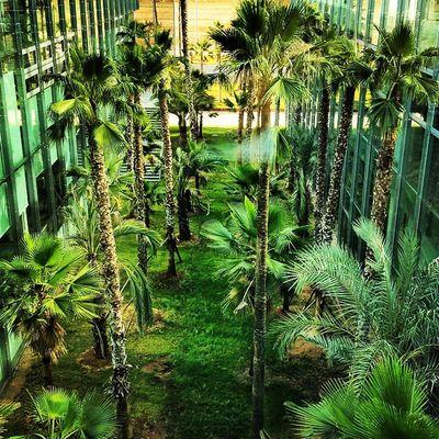 Inside congress center Sevilla