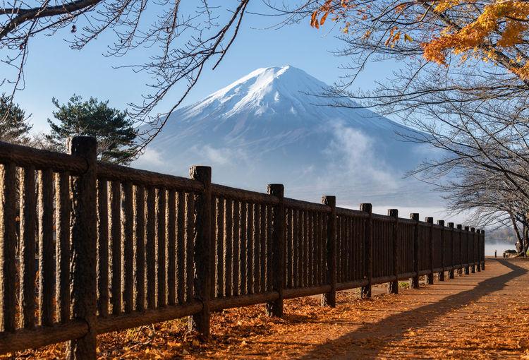 Fuji with