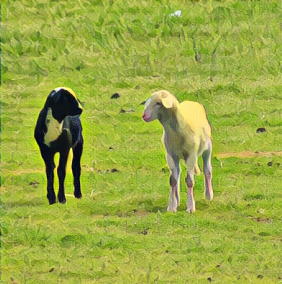 Sheep Blackandwhite Grass Domestic Animals Animal Themes Mammal Livestock Green Color Field No People Outdoors Nature Landscape Togetherness Day Love Ovejas
