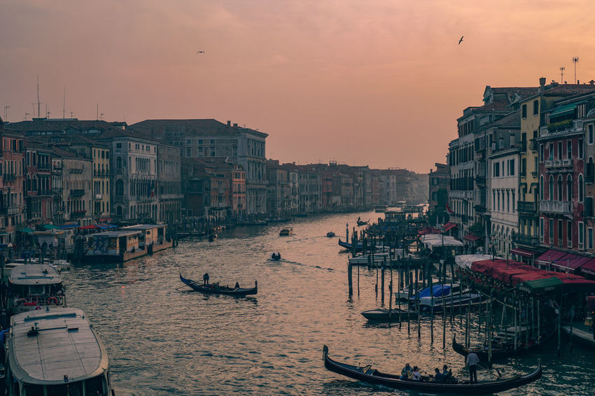 Sunset by Rialto, Venice. One of the best sunsets in the world. Vacations Beach Sunset Outdoors Architecture Large Group Of People City Cityscape People Sky Day Venice, Italy Venice View Venice Italy Venice Rialto Bridge Rialto Italy Italia Venezia EyeemPhilippines Eyeemphillipines EyeEmPhilppines EyeemPhilippines Mobilephotography Eyeem Philippiness Architecture Be. Ready.