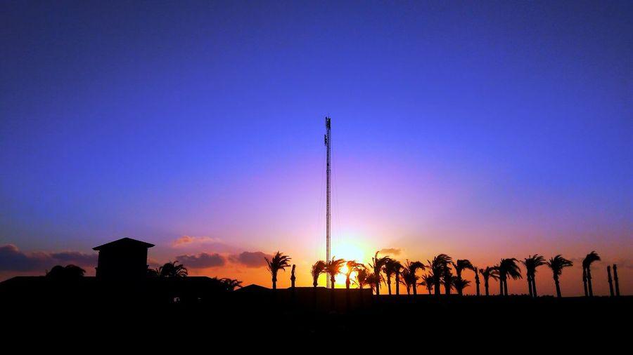 Everydaymoments Egypt Nature Blue Sky Egyptphotography Egyptian Exploring EyeEm Best Shots EyeEm Nature Lover Flag Tranquil Scene Scenics Coast Dramatic Sky Tranquility Palm Tree Atmospheric Mood Idyllic Calm
