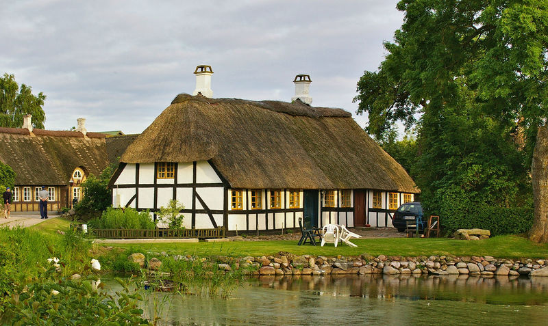 Traditional timber-framed thatched Danish farmhouse with pond in the foreground on the island of Lyø, Denmark Denmark Farmhouse Pond Tranquility Architecture Building Exterior Built Structure Countryside House Nature Outdoors Rural Scene Sky Thatched Cottage Thatched Roof Timber Frame Timber-framed Tree Water