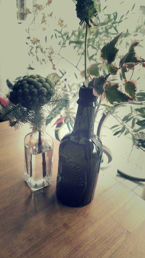 Flowers Flower Bottle