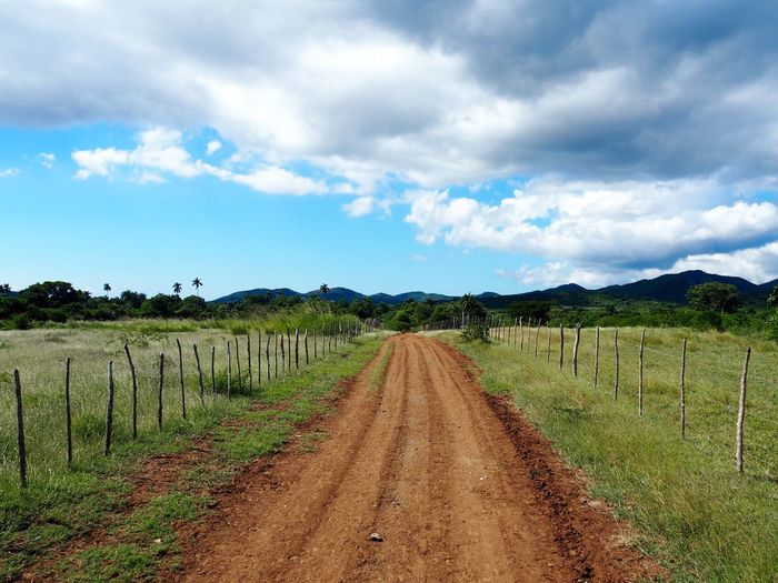 Sky Cloud - Sky Landscape Dirt Environment Land Agriculture Road Plant Scenics - Nature Field Nature Rural Scene Direction No People Tranquil Scene Dirt Road The Way Forward Tranquility Growth Diminishing Perspective Outdoors Winemaking