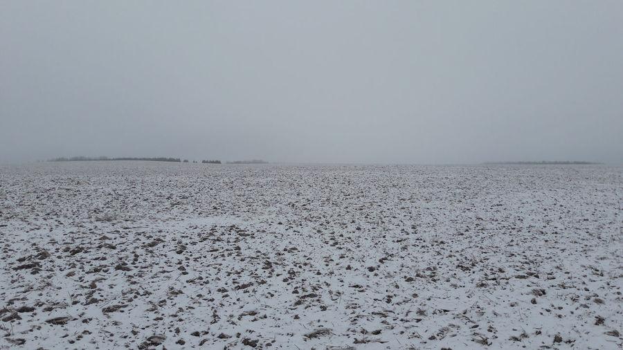 Landscape Photography Winter Scene Wintertime Landscape Minimal No People Open Space Snowy Field Tranquil Scene