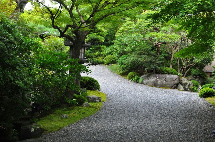 京都の思い出(^-^) Taking Photos Japanese Garden Relaxing Enjoying Life EyeEm Nature Lover