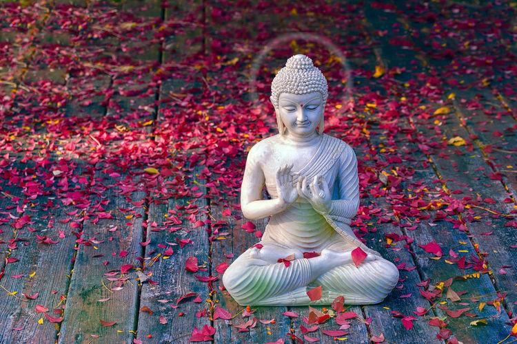 Aura Buddha
