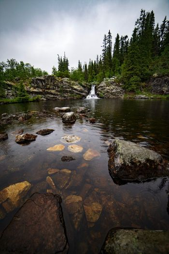 Waterfall in the rain Waterfall Scandinavia Vemdalen Hiking Trail Outdoor Life Waterfalls Scandinavia Sweden Hiking Tree Water Plant Sky Nature Beauty In Nature Cloud - Sky Scenics - Nature Lake Tranquility Non-urban Scene Reflection Outdoors Waterfront