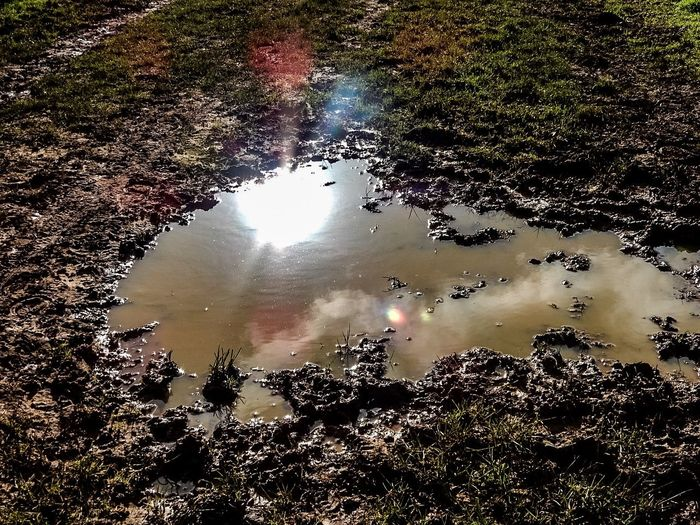 Water Reflections Puddle Puddleography Puddle Reflections Mud Muddy British Countryside England Sun Clouds World In A Puddle Somethingdifferent Light Nature_collection The Week Of Eyeem The Week On Eyem Pictures With Clouds Nikon Nikonphotography Showcase: February