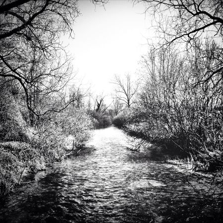 Blackandwhite Nature Landscape River