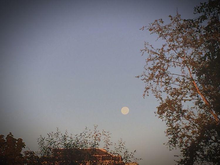 Endloseweiten Achtemalnichsoaufdiedetails Theworldisyours Goodmorning NeedCoffee Moon