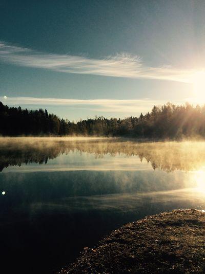 Autumn 2015 Kirkkonummi, Finland.