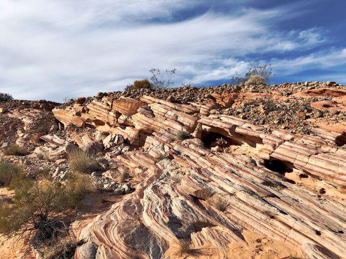 Steps Desert