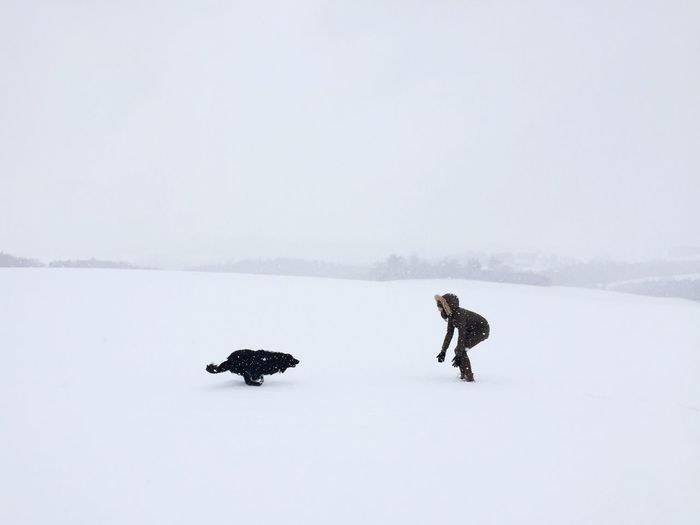 Woman And Dog On Snow Covered Landscape