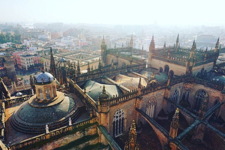 Church Cathedral Architecturelover Birdseyeview Rooftop Horizon Gothic SPAIN España Andalucía Sevilla Historic Travelphotography Travelpic Beautifuldestinations Cityscape Architecture City Building Exterior Day Sky