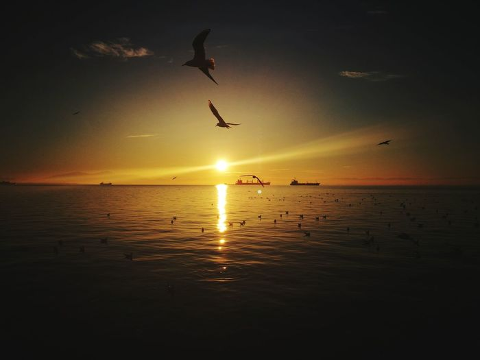 last sunset of