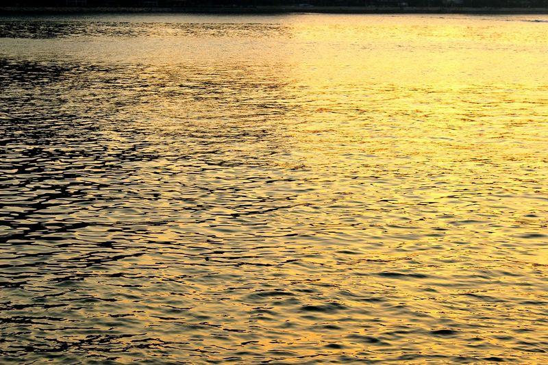 2015 Life In Hong Kong· Sea Under The Sun Flat Reflection Nature_collection Nature Photography Hong Kong Sea Side