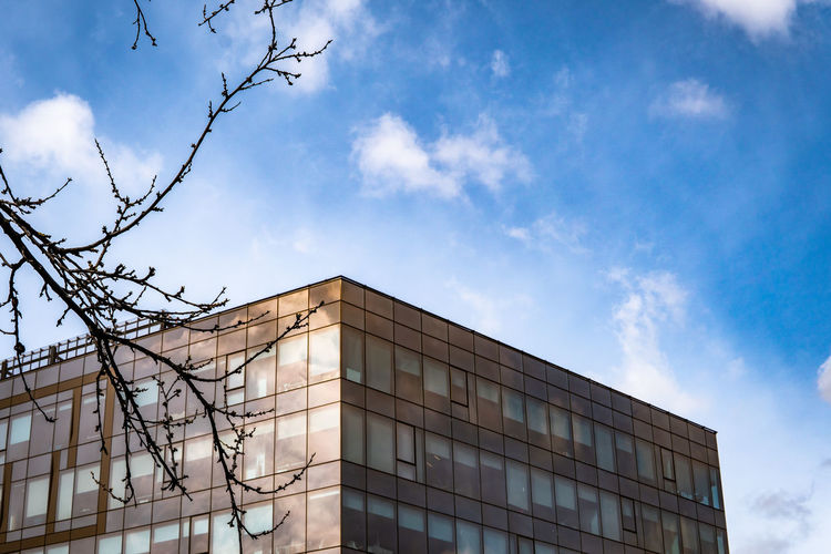 Built Structure Architecture Building Exterior Sky Low Angle View Building Modern Cloud - Sky Day Nature City No People Office Office Building Exterior Outdoors Blue Modern Modern Architecture Architecture Window Office Office Building Tree Bare Tree Branch High Section