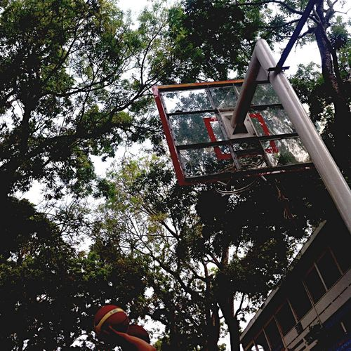 The first day 🏀 First Eyeem Photo