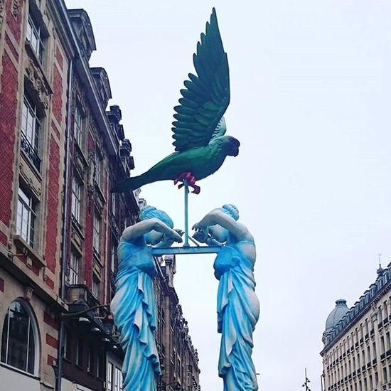 Lille 2015 Lille Rio Carnaval France Amazing
