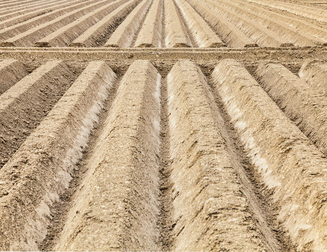 Furrows abstract. Background Brown Ground Dirt Earth Ploughed Field Agricultural Land Agriculture Countryside Furrows Of The Fields Furrows Plowed Field Perspective Bacground Outdoors Brown Color Perspectives On Nature