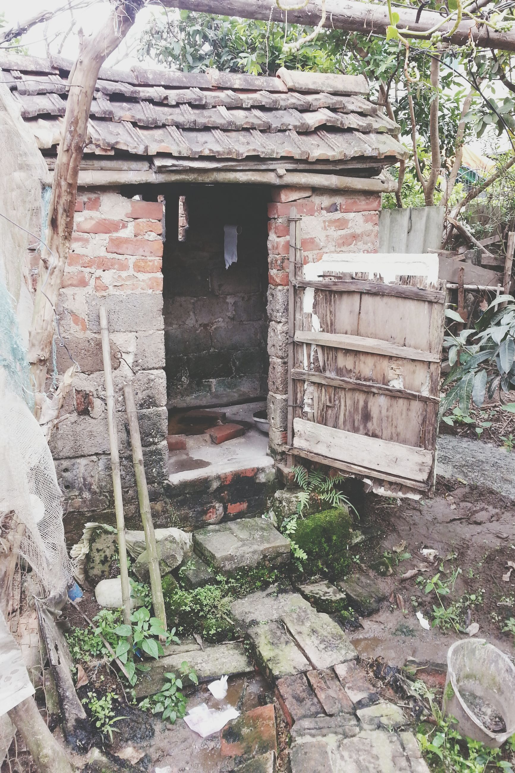 built structure, architecture, abandoned, building exterior, house, damaged, old, plant, obsolete, run-down, bad condition, deterioration, weathered, steps, day, stone wall, wall - building feature, tree, no people, ruined