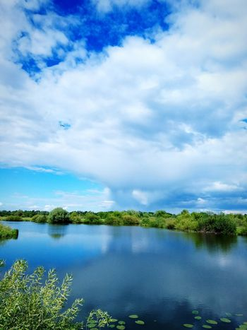 Cloud - Sky Lake Flying Water Nature No People Sky Landscape Outdoors Scenics Day Beauty In Nature Bird Tree Grass