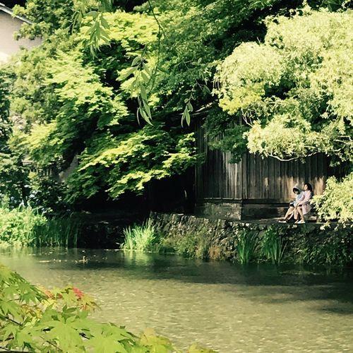 유후인 Lake Kinrin Japan Photography Nature J.H. Sommergefühle