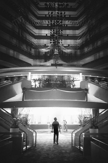 Architecture Built Structure Real People Rear View Illuminated Indoors  One Person Building Full Length Men Lifestyles Walking City Night Standing Incidental People Lighting Equipment Railing Ceiling Architectural Column Silhouette