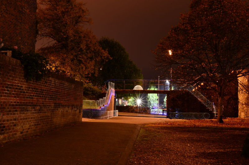 Long Exposure Shot Nikon Architecture Autumn Building Exterior Built Structure City Footpath Glowing Illuminated Long Exposure Motion Multi Colored Nature Night No People Outdoors Plant Sky Street Tree Wall