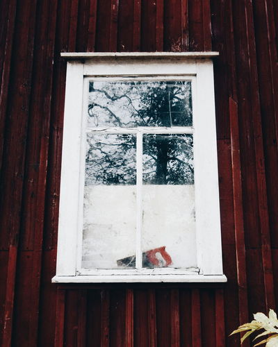 Drafty window Architecture Building Exterior Built Structure Closed Curtain Day Door Entrance Glass - Material Hanging House No People Open Outdoors Red Residential Structure Wall - Building Feature Window Wood - Material Wooden Drafty Windows Saw Protection Old Buildings