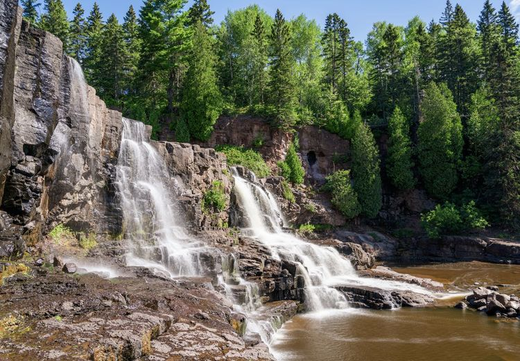 Scenic view of waterfall in forest